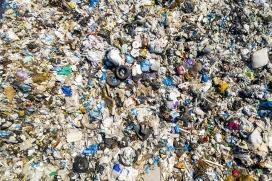¿Se puede reducir la contaminación y desechos que genera la industria del pet food?