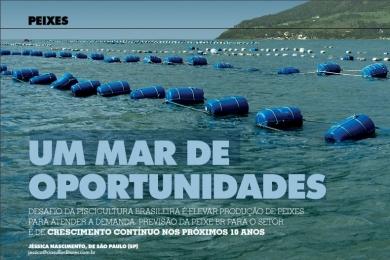 UM MAR DE OPORTUNIDADES | Feed&Food
